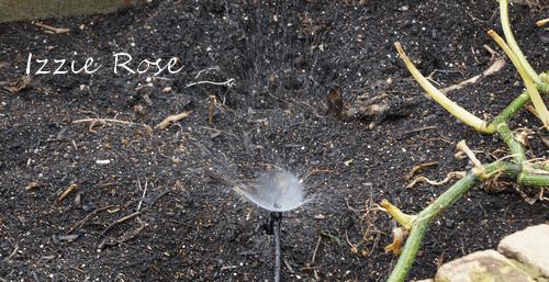 自動水やり機 散水機 タカギ スプリンクラー 設置方法