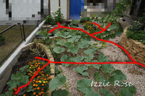 自動水やり機 庭の水分岐